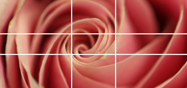 Photography, Photography Composition, Golden Ratio