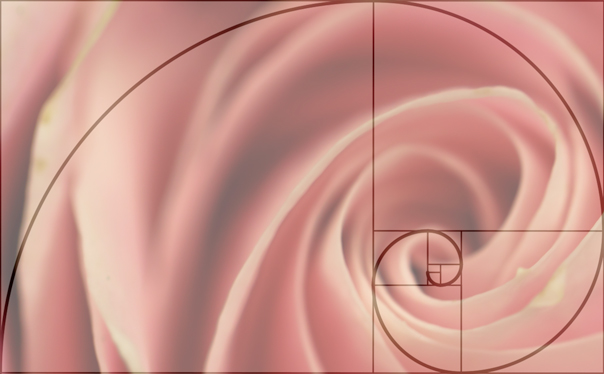 Photography, Photography Composition, Golden Spiral